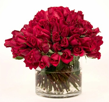 100 red Roses proclaiming her beauty ... topping a low glass cylindrical vase.