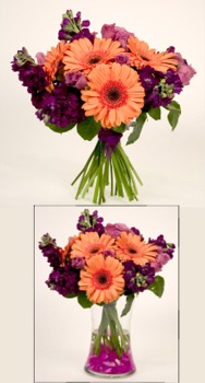 Stock and Gerbera daisies are arranged by hand and tied with a deep purple ribbon